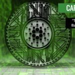 Cardano (ADA) Is the Chinese Bamboo Tree for Charles Hoskinson It is beginning to Grow Rapidly
