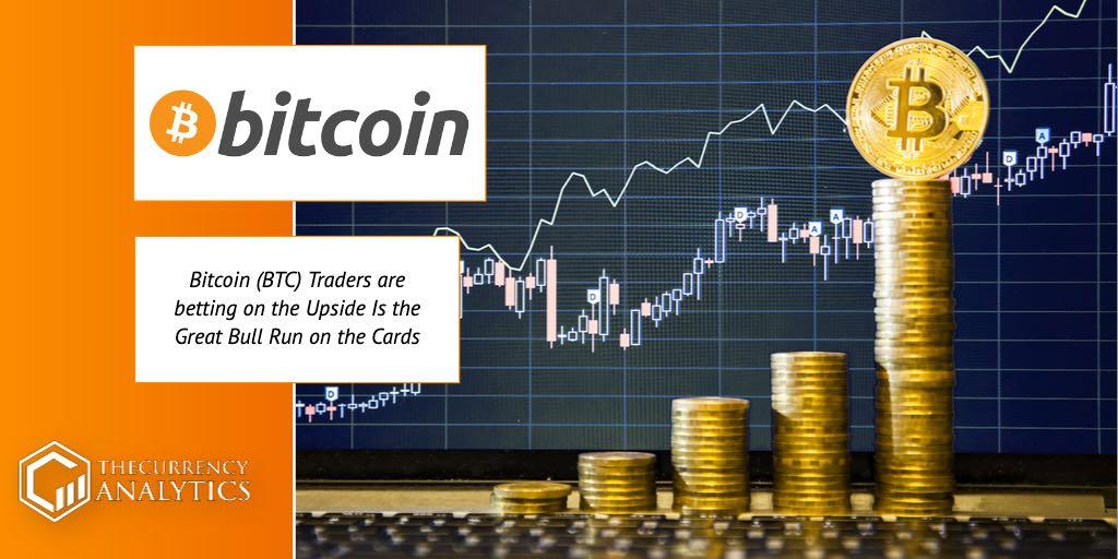 bitcoin BTC trader bull