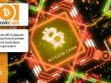 Bitcoin Cash BCH Upgrade