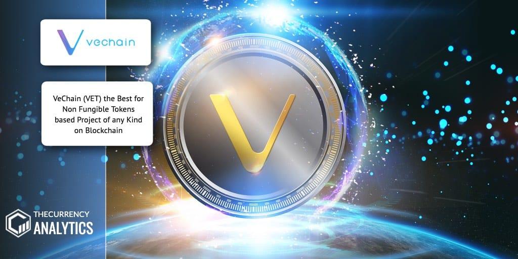 vechain Blockchain Non Fungible tokens