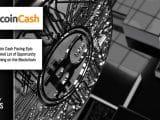 Bitcoin Cash BCH Blockchain