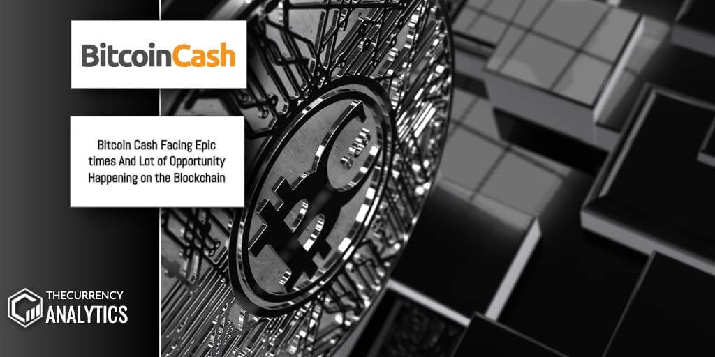 Bitcoin Cash BCH Blockchain