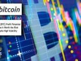 Bitcoin Investors Volatility Risk