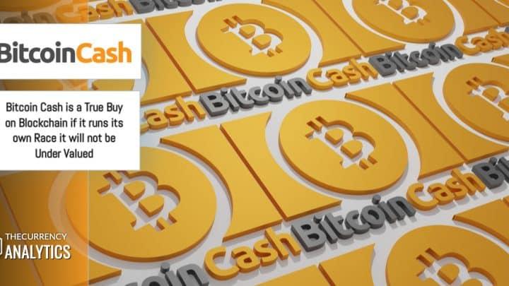 Bitcoin Cash BCH Under Valued
