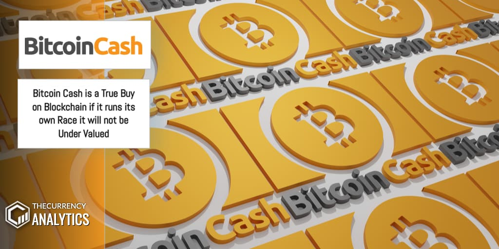 Bitcoin Cash BCH Under Valued