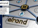 Elrond EGLD blockchain