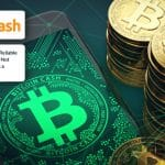 Bitcoin Cash (BCH) As a Reliable Payment Rail despite Not Performing Well as a Cryptoasset